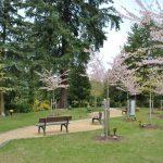 Bestattungshaus Deufrains in Eberswalde - Waldfriedhof Eberswalde 5
