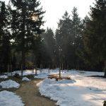 Bestattungshaus Deufrains in Eberswalde - Waldfriedhof Eberswalde 7