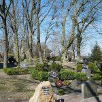 Grimnitzer Friedhof Joachimsthal